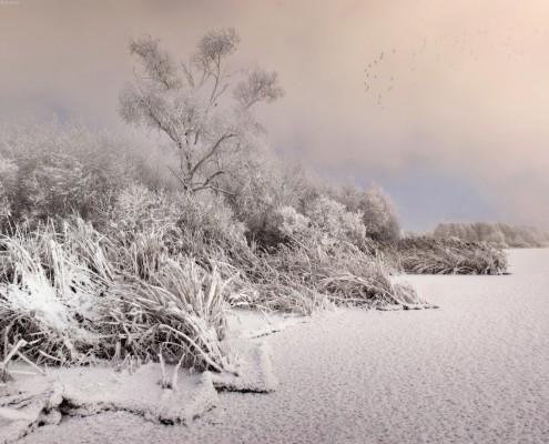 Шатура-зимой-(27)