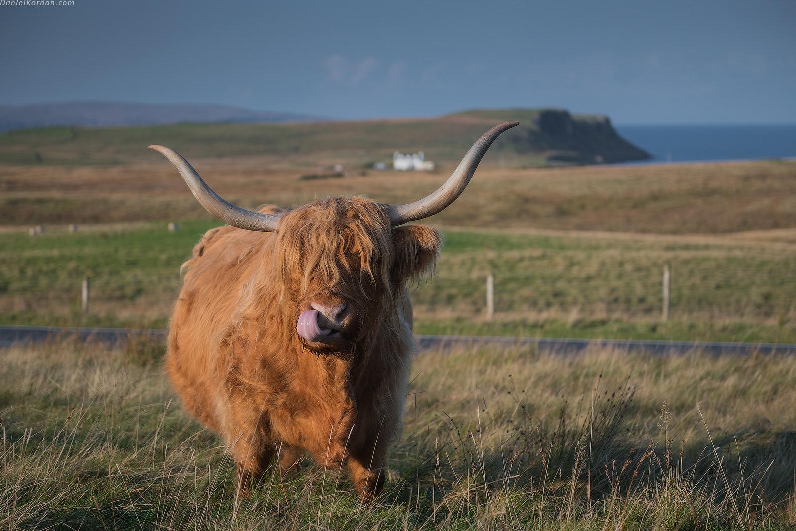 Scotland photo workshop tour pricing kristyandbryce Choice Image